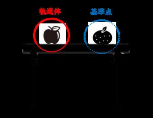 リンゴが軌道体、みかんが基準点
