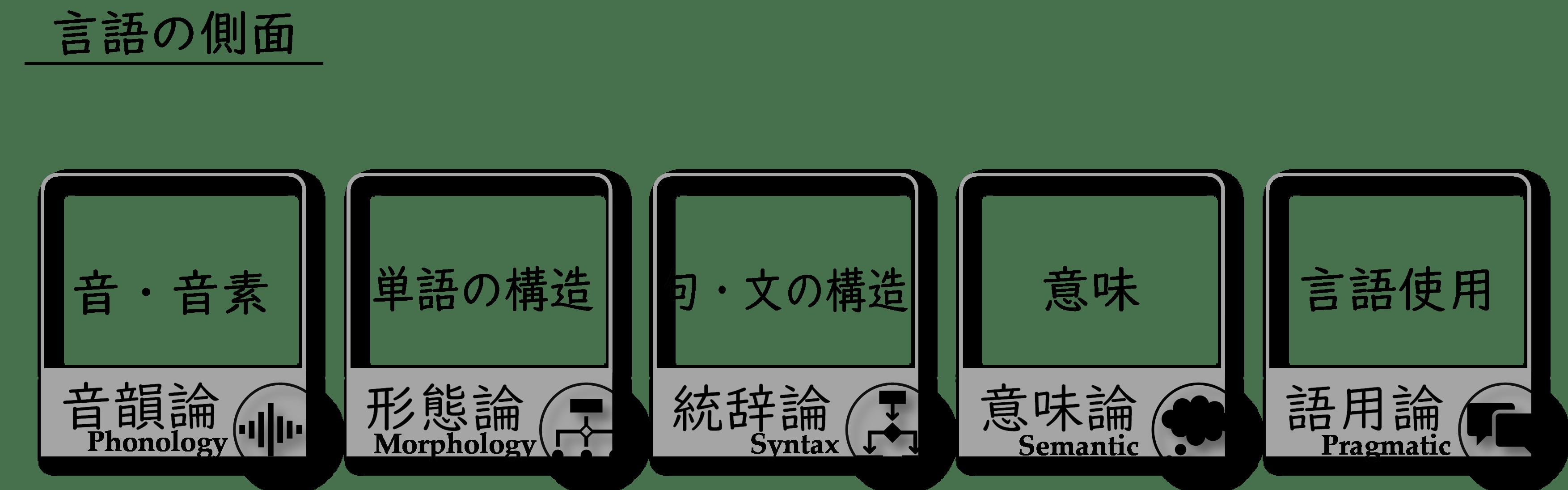 内的言語学(音韻論・形態論・統辞論・意味論・語用論)